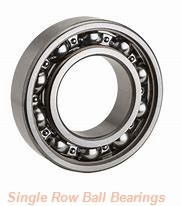 SKF 313SFF-HYB 1  Single Row Ball Bearings