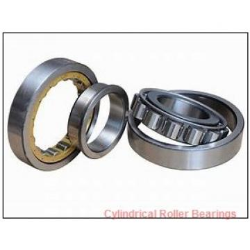 1.575 Inch | 40 Millimeter x 2.677 Inch | 68 Millimeter x 0.827 Inch | 21 Millimeter  CONSOLIDATED BEARING NCF-3008V  Cylindrical Roller Bearings