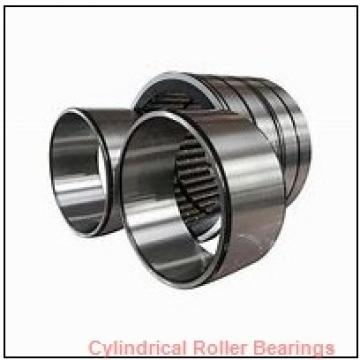 3.937 Inch | 100 Millimeter x 7.087 Inch | 180 Millimeter x 1.339 Inch | 34 Millimeter  CONSOLIDATED BEARING NU-220  Cylindrical Roller Bearings